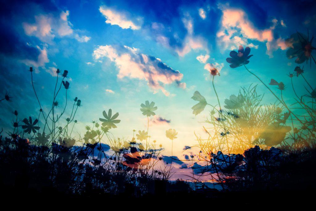 フリーBGM無料音楽素材 【癒し 睡眠 リラックス 懐かしい】「F.ver under a nitght sky」