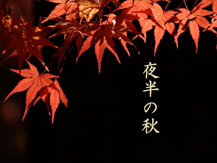 フリーBGM【秋 夜 作業用】「BGM46」無料音楽素材