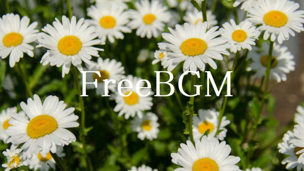 (ジングル)フリーBGM 【10秒ほど、ギター、動画、オープニング、エンディング】「ジングル97」無料音楽素材